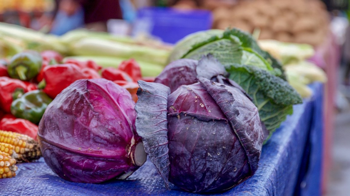 Cabbage-lifeofhealthy.com