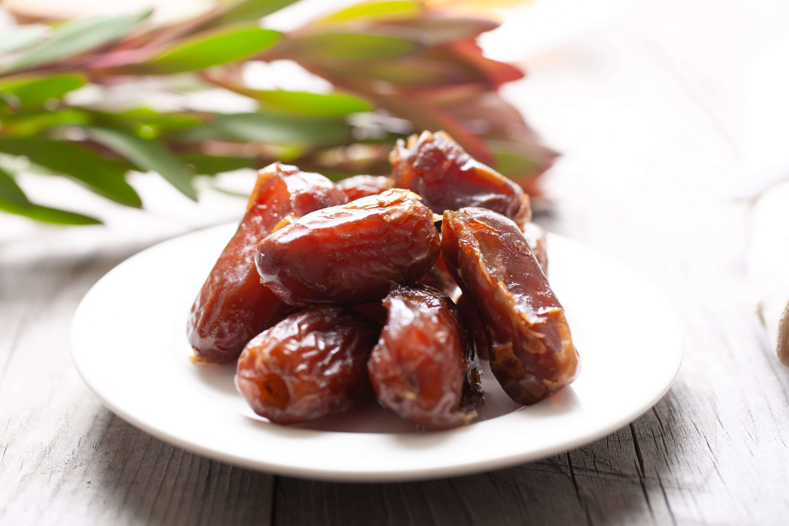 Dates assist digestive well being-lifeofhealthy.com