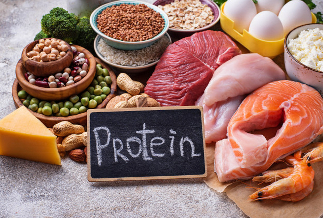 Protein-lifeofhealthy.com